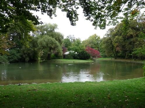 parc, lac, natură